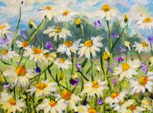Painting of white daisies flowers, beautiful field flowers on canvas. Palette knife Impasto artwork. Original oil painting of white daisies flowers, beautiful Stock Photos