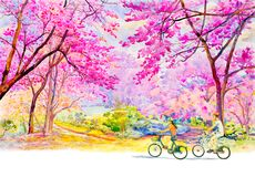 Painting Wild himalayan cherry roadside in the morning. Pink red color of Wild himalayan cherry, roadside in the morning with Men and women travel bicycles, sky Royalty Free Stock Photography