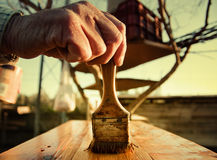 Painting wood in garden. Hand of person painting wooden surface in garden with tree house in background Royalty Free Stock Photo