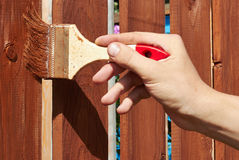 Painting wooden fence with a   brown paint Royalty Free Stock Photography