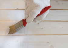 Painting wooden lining of pine Royalty Free Stock Image