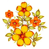 Painting yellow flowers. On white background Royalty Free Stock Images