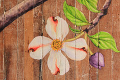 Paintings of flowers on wood floors. Painting flowers Camille along the wooden floor Stock Images