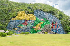 Paintings at the Prehistory Mural in Vinales , Cub Royalty Free Stock Images