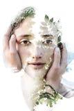 Paintography Peinture combinée avec les photographies multiples Photos libres de droits