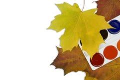 Paints of autumn. Stock Photos