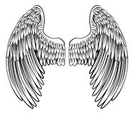 Pair of Angel or Eagle Wings Stock Image