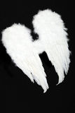 Pair of angel wings Stock Photo