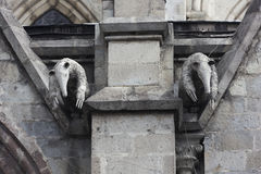 Pair of anteater gargoyles on the Basilica del Voto Nacional. GVP1165 Royalty Free Stock Images