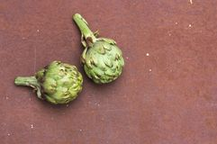 A pair of artichokes on a rusty brown metallic texture. Two artichokes on a brown rusty metal texture with space to place other elements or texts stock images