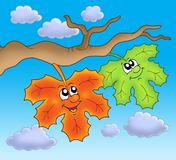 Pair of autumn leaves on sky Royalty Free Stock Photo