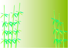 Pair_of_a_bamboo Royalty Free Stock Images