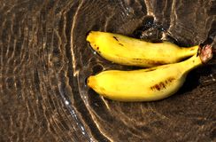 Pair of banana in water Royalty Free Stock Photo