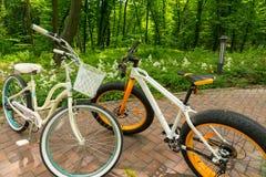 Pair of bikes on bricks in a bautiful park Stock Photo