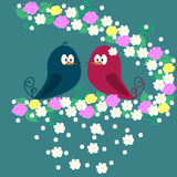 A pair of birds on a branch with flowers  Royalty Free Stock Images