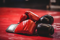 Pair of black and red boxing gloves Royalty Free Stock Photo