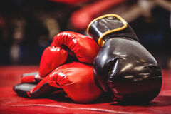 Pair of black and red boxing gloves Stock Photos