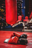 Pair of black and red boxing gloves Stock Photography