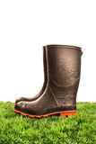 Pair of black rubber boots Royalty Free Stock Image