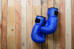 Pair of blue boxing gloves hanging on the wall Stock Image
