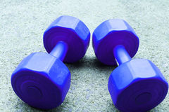 A pair of blue dumbel  on the floor. A pair of dumbel   place  on the floor   for  exercise Stock Photos