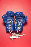 A Pair of blue gloves Royalty Free Stock Photo