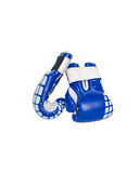 Pair of blue leather boxing gloves isolated on white Stock Photography