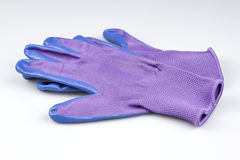 Pair of blue and purple ladies gardening gloves Royalty Free Stock Image