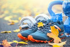 Pair of blue sport shoes water and  dumbbells laid on a path in a tree autumn alley with maple leaves -  accessories for run exerc Royalty Free Stock Image
