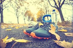 Pair of blue sport shoes water and  dumbbells laid on a path in a tree autumn alley with maple leaves -  accessories for run exerc. Ise or workout activity Stock Photography