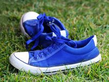 Pair of blue and white sneakers on the grass stock photos