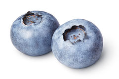 Pair of blueberry berry isolated on white. Background with clipping path royalty free stock photo