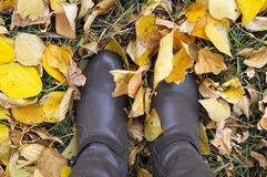 Pair of boots in autumn Stock Photography