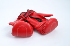 A pair of Boxing Glove. Isolated Stock Photos