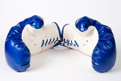 Pair of boxing gloves on white Stock Photography