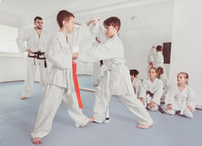 Pair of boys practicing new karate moves Stock Photography