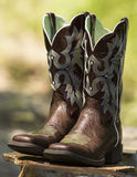Fancy Western Boots. Pair of Brown Fancy Western Boots on rock with blurred green background Stock Images