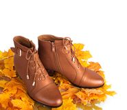 Pair of brown female boots on a background Stock Photos