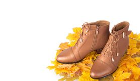 Pair of brown female boots on a background Royalty Free Stock Images