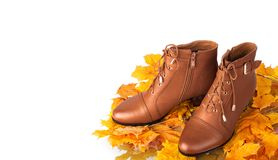 Pair of brown female boots on a background Royalty Free Stock Photos