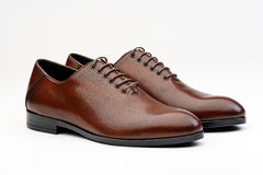 Pair of brown male classic shoes Stock Photography