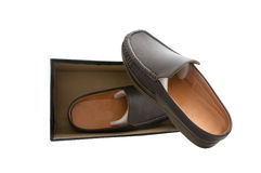 Pair of brown male shoes Stock Photos