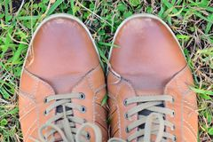Pair of brown shoes in green grass. Lifestyle image Pair of brown shoes in green grass Royalty Free Stock Photography
