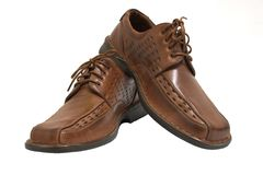 Pair of brown shoes isolated o. N white stock photography