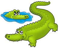 Pair of cartoon crocodiles. Color illustration stock illustration