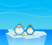 pair of cartoon penguins Royalty Free Stock Images