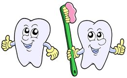 Pair of cartoon teeth Royalty Free Stock Photo