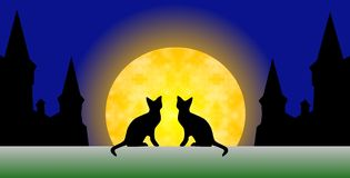 A pair of cats looking at the moon. A pair of cats looking at the full moon in the old medieval town Stock Photo