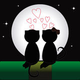 The pair of cats. In love watching the Moon Royalty Free Stock Photography