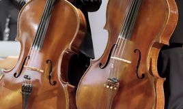 Pair of cellos in an oblique vertical position approximately parallel. In concert Stock Photos